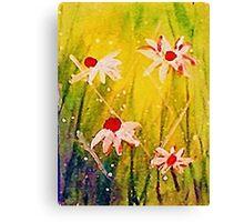 #2  series of daisies Canvas Print
