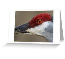 Red Cap Greeting Card