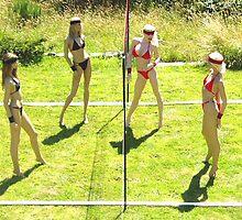 Fantasy Beach Volleyball by robin beuscher