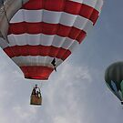 Balloons Over Readington by Pat Abbott