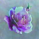 Pink Tones Rose Photo Manipulation by artonwear