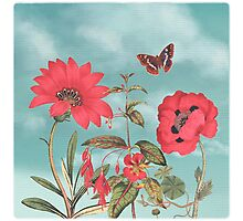 Watermelon Flowers and Turquoise Sky Photographic Print