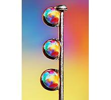 Tropical Pin Drop Photographic Print