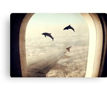 Monday Dream - Flying with My Dolphin Friends Canvas Print