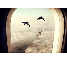 Monday Dream - Flying with My Dolphin Friends Photographic Print