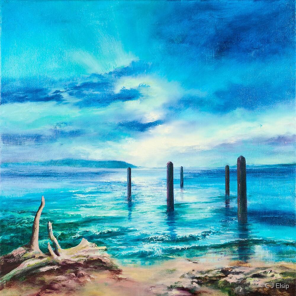 Sentinels by C J  Elsip