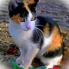 My Sweet Little Friend by Redrose10