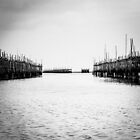 Oyster Farm by hangingpixels