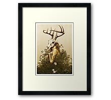 The Deer Secret Framed Print