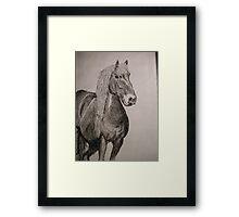 Mr. Jack Horesersjes Framed Print