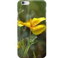 Yellow Poppy iPhone Case/Skin