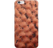 Garden Ornament iPhone Case/Skin