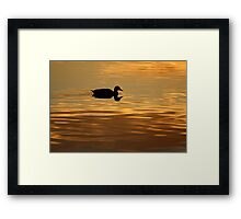 golden water perfect reflection Framed Print