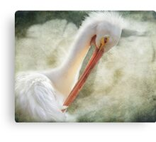 Good Grooming Canvas Print