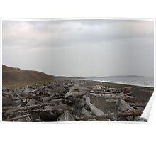 Driftwood Beach, San Juan Islands, Washington Poster