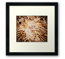 Designs Inspired By Nature: Falcon Framed Print