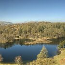 Tarn Hows,English Lake District by VoluntaryRanger