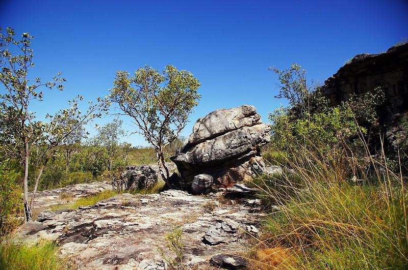 The magic of Arnhem Land - a tree and a rock by georgieboy98