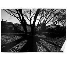 Symmetric Shadows Poster