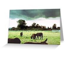 Self-Appointed Inspector of Donkeys and Rain Storms Greeting Card