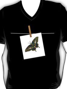 Butterfly Art 5 T-Shirt