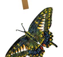 Butterfly Art 5 Sticker