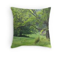 Old beauty. Throw Pillow