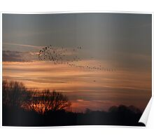 Winter Sunset Pickmere Lake Cheshire Poster