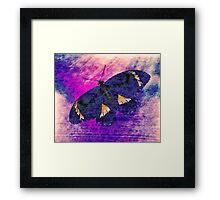 Butterfly Art 3 Framed Print