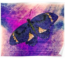 Butterfly Art 3 Poster