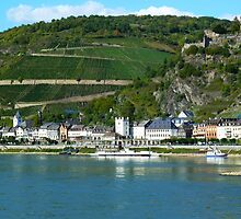 Bopad on the Rhein - Germany  by RAN Yaari