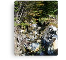 Cold Mountain Stream I Canvas Print