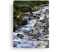 Cold Mountain Stream III Canvas Print