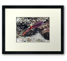 weight less ... Framed Print