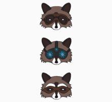 Raccoons Kids Clothes