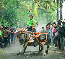 Mekepung by Purnawan Taslim Hadi