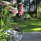 Lilies in the Garden by Pat Yager
