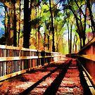 Bridge of leaves by Christina Brundage