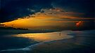 Sailor's delight by cclaude