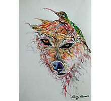 Wolf and Hummingbird Photographic Print