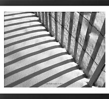 Imprisoned Sands - In Black and White by Deb  Badt-Covell