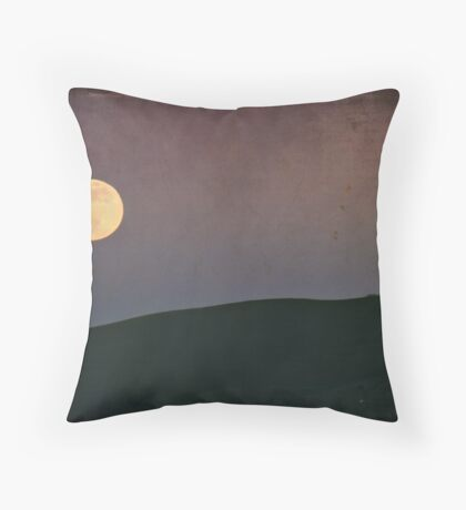 Moonlight Serenade Throw Pillow