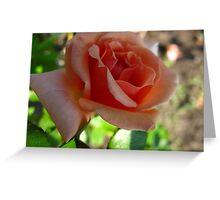 Evening peach Greeting Card