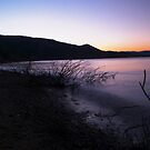 Pineview At Dusk by Pro Nature Photography