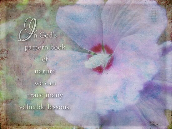 God's pattern book-inspirational by vigor