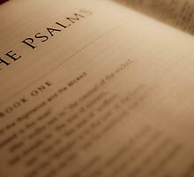 Book of Psalms by Chad Eastman