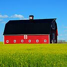 The Big Red Barn by Bob Christopher