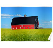 The Big Red Barn Poster