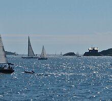 Narragansett Bay Entrance by cc24