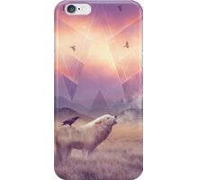 In Search of Solace iPhone Case/Skin